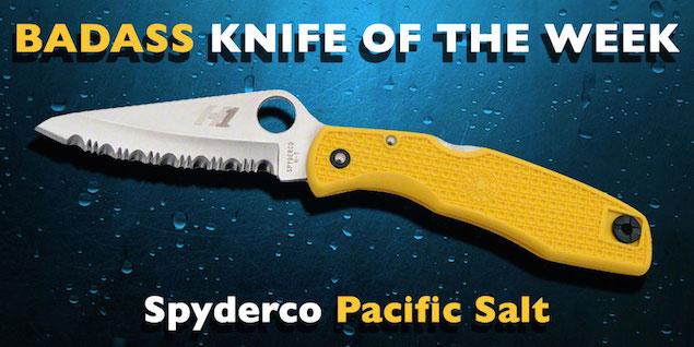 Spyderco Pacific Salt