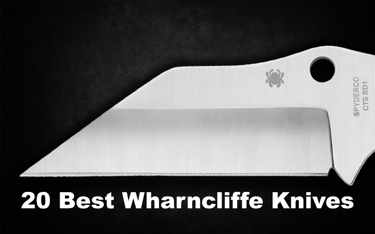 Best Wharncliffe Knives